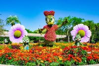 Daisy Topiary Epcot Flower & Garden Festival