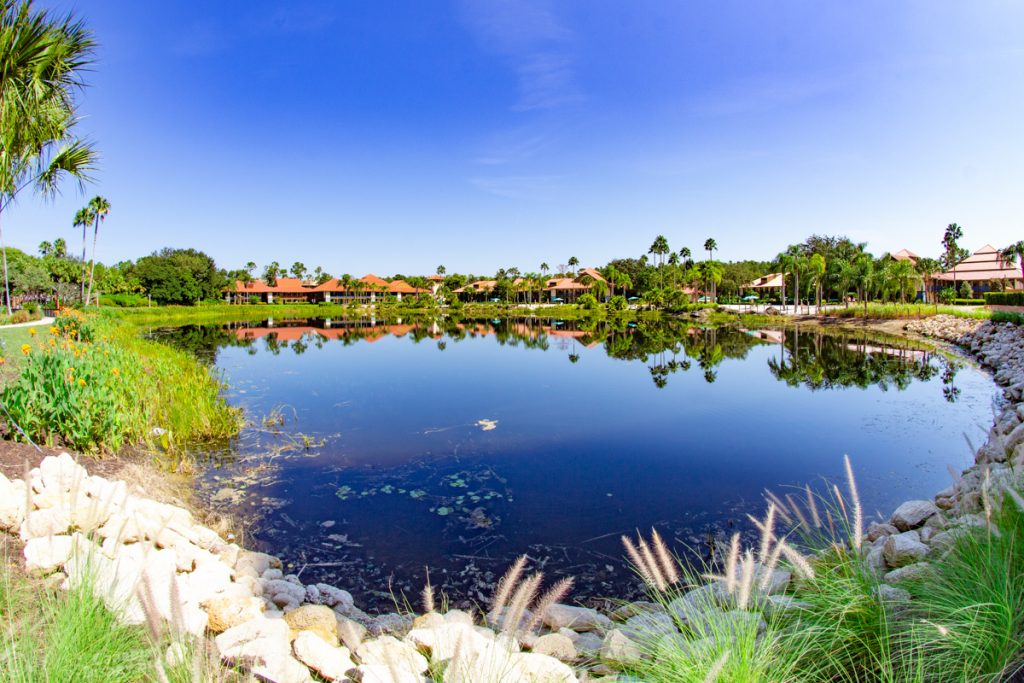 Cabanas at Disney's Coronado Springs Resort