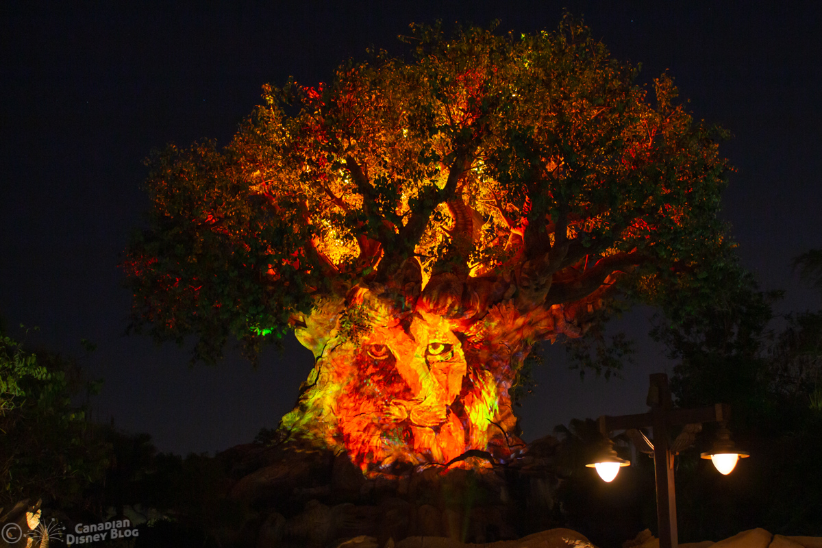 Tree of Life Awakenings at Disney's Animal Kingdom