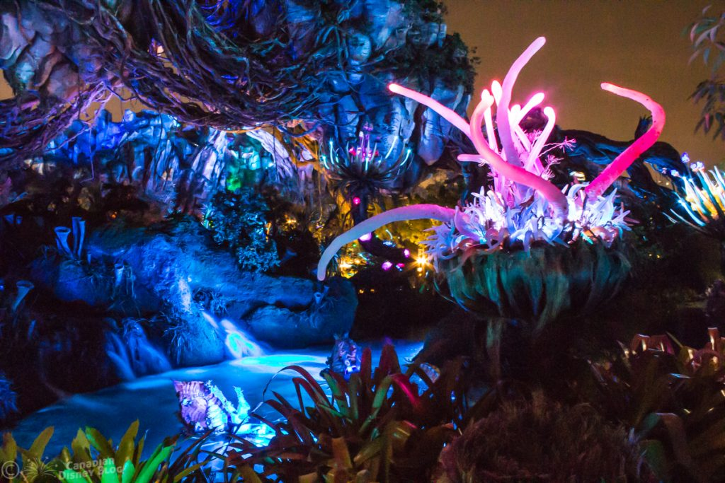 Pandora at Disney's Animal Kingdom