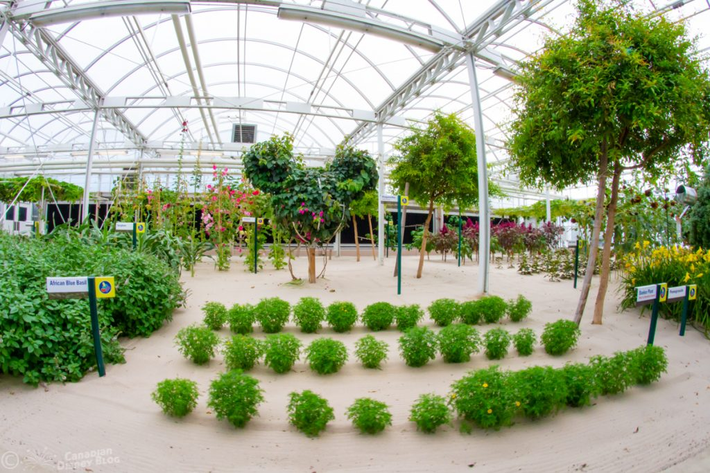 Living with the Land Greenhouse and Hidden Mickey at Epcot