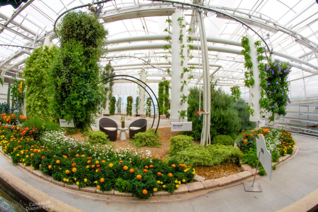 Living with the Land Greenhouse at Epcot